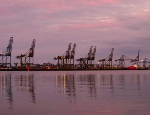 Felixstowe bans empties again as congestion builds and vessels 'cut and run'